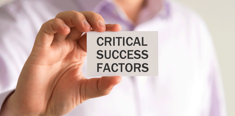 succes factors for Dragon